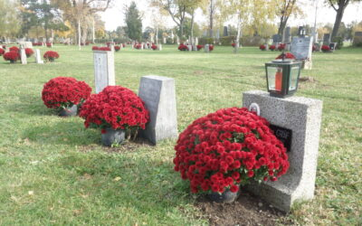 Die 'Gruppe 40' am Wiener Zentralfriedhof