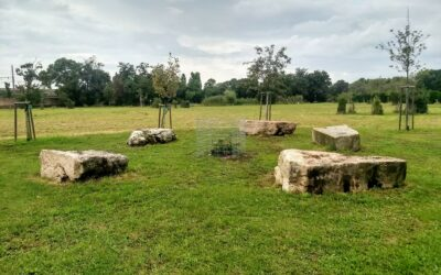 Den Wiener Zentralfriedhof individuell entdecken